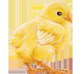 Leghorn Rooster ##STADE## - coat 7