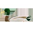 Mallard Duck ##STADE## - coat 36