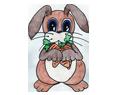 Rabbit ##STADE## - coat 16019