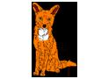 Fox ##STADE## - coat 1340000003